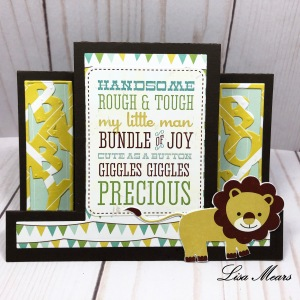 Bundle of Joy Paper Collection Card and Baby Shower Invitations